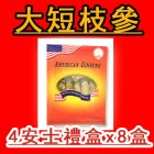 YC20-SP American Ginseng Large Short Box Set 4oz x 8Box